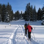 cross-country-ski-canada